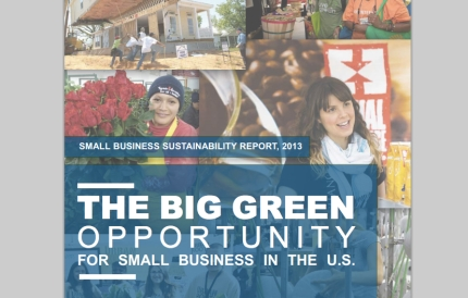 The 2013 Small Business Sustainability Report